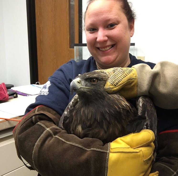 Ashley with Golden Eagle